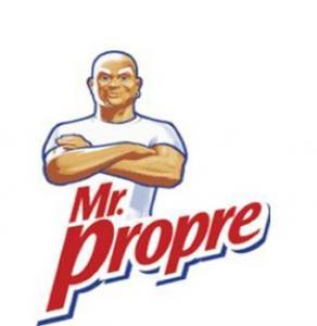 avis Mr Propre -