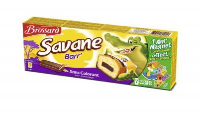 Savane Barr'